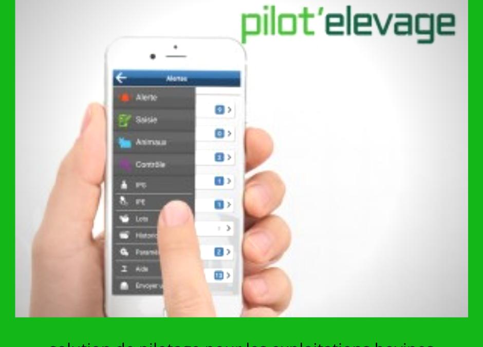 pilot d'elevage
