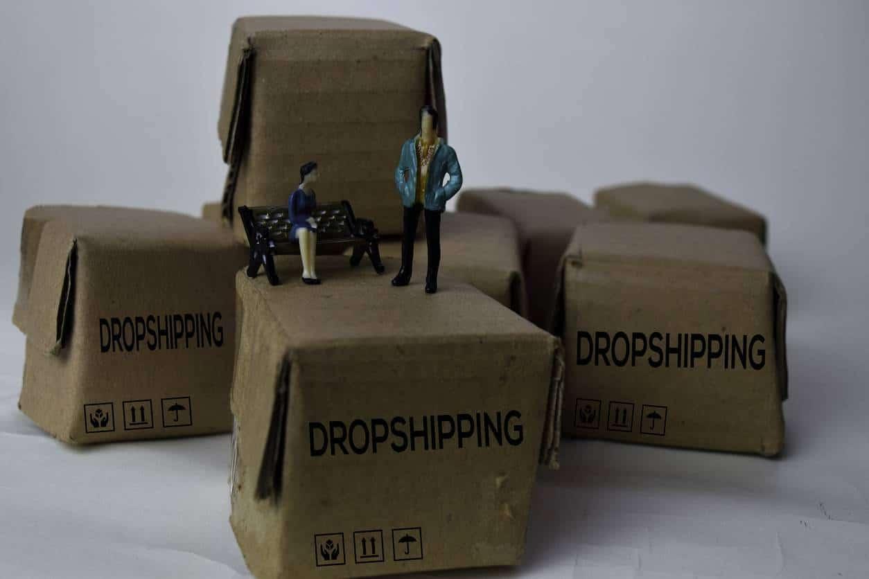 formation en dropshipping